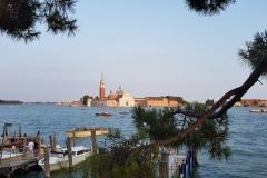 Treeclimb  a Verona
