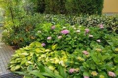 Realizzazione Giardini padova
